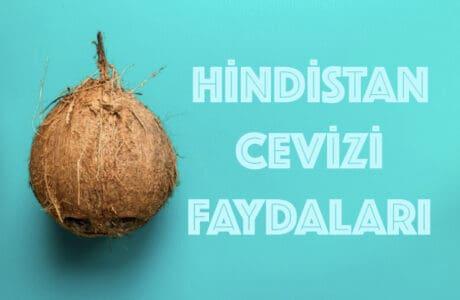 Hindistan Cevizi Yağı Faydaları Kullanımı