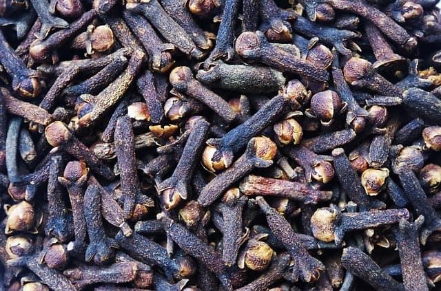 karanfilin faydaları